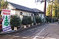 Christmas Trees on Sherwood Park - geograph.org.uk - 1610749.jpg