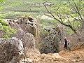 Ciclista na Serra da Capela em Parelhas - panoramio.jpg