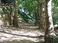 Cingles de Bertí 1 ES510097.JPG