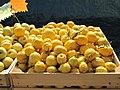 Citrons de Menton.jpg