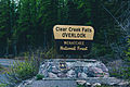 Clear Creek Falls Overlook, Wenatchee National Forest (24751341413).jpg