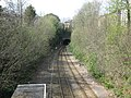 Clifton Down tunnel - geograph.org.uk - 1249068.jpg