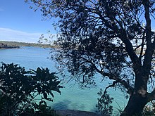 Clontarf Beach from the Spit to Manly Walk.jpg