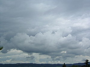 Clouds CL8.jpg