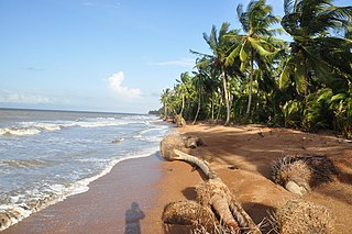 Barima-Waini Region of Guyana