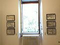 Collezione di coleotteri Museo delle Grigne di Esino Lario 2.jpg