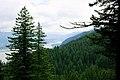 Columbia River Gorge (4858359223).jpg