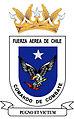 Comando de Combate de FACH.jpg