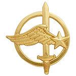 Commando-air-béret.jpg