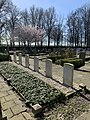 Commonwealth war graves - The Netherlands - Muiden General Cemetery.jpg