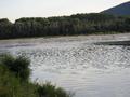 Confluent de la Morava & du Danube.PNG