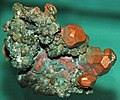 Copper crystals (Mesoproterozoic, 1.05-1.06 Ga; Quincy Mine, Hancock, Upper Peninsula of Michigan, USA) 4 (16685668844).jpg