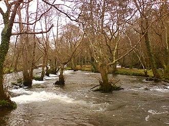 Coristanco - Anllóns river in Verdes, Coristanco