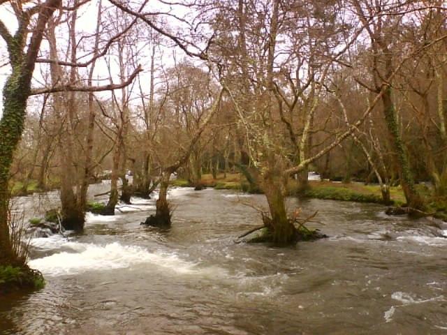 Coristanco (Verdes), Galiza