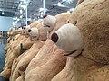 Costco Bear Lineup.jpg