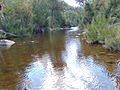 Cotter River at the junction with Paddy's River.jpg