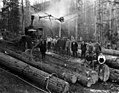 Crew loading logs on hillside, Kerry Timber Company, Oregon, ca 1917 (KINSEY 2358).jpeg