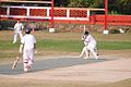 Cricket on the Doon School main field.jpg