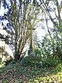 Croix, Les Guérandes, Plouër sur Rance, Côtes d'Armor DSC09291.jpg