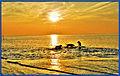 Cuxhaven Wattenmeer beim Muschelgrund (8169448060).jpg