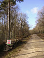 Cycle path through the Brick Kiln Inclosure, New Forest - geograph.org.uk - 122931.jpg