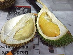 meaning of durian