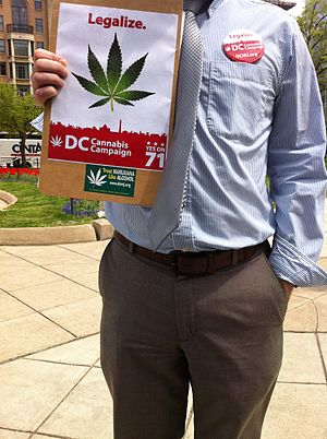 Decriminalization of non-medical cannabis in the United States - A canvasser for the Washington DC Cannabis Campaign, soliciting signatures for Initiative 71 (legalizing of marijuana)