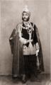 Dalip Singh Sukerchakia 1861.png