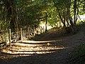 Dartmoor Way below Rora Down - geograph.org.uk - 563907.jpg