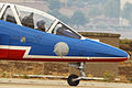 Dassault-Dornier Alpha jet de la Patrouille de France (15538686145).jpg
