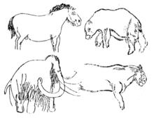 Les Combarelles - Wikipedia