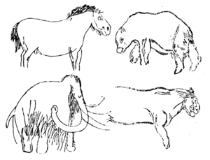 Les Combarelles - Drawings of a wild horse, a bear, a mammoth, and a cave lion