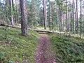 Degučių sen., Lithuania - panoramio (163).jpg