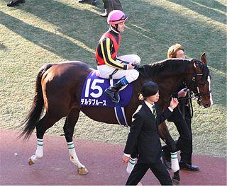 Delta Blues (horse)