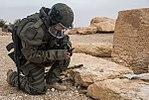 Demining of Palmyra 2017 16.jpg
