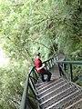 Descendo a escadaria do caracol.jpg