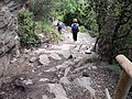 Descent Toward Vernazza (4711609855).jpg