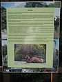 Descriptions of animals in the Silesian Zoological Garden n 06.JPG
