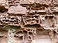 Detail of weathering, Red Castle - geograph.org.uk - 529133.jpg