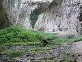 Devetaki Cave-Деветашка пещера - panoramio (4).jpg