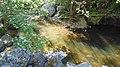 Devin River Valley Iz5.jpg