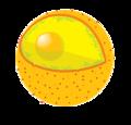 Diagram human cell nucleus no text.png