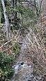 Dills Creek, Sylva, NC (46631162291).jpg
