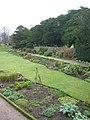 Dirleton Castle, herbaceous border - geograph.org.uk - 922503.jpg