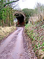 Disused railway viaduct and farm road near Blackstone - geograph.org.uk - 652719.jpg