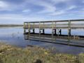 Dock on Lake Deaton (Wildwood, Florida).png