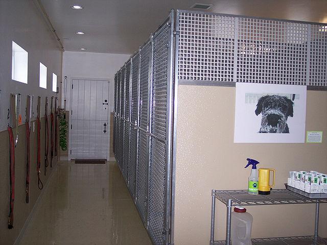 Garage Dog Kennel Plans