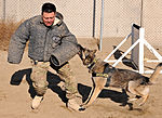 Dogs defend Bagram 121221-F-LR266-090.jpg