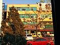 Dongying, Shandong, China - panoramio (85).jpg