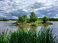 Dorney Wetlands (34674529531).jpg